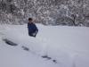 Apiari nella neve